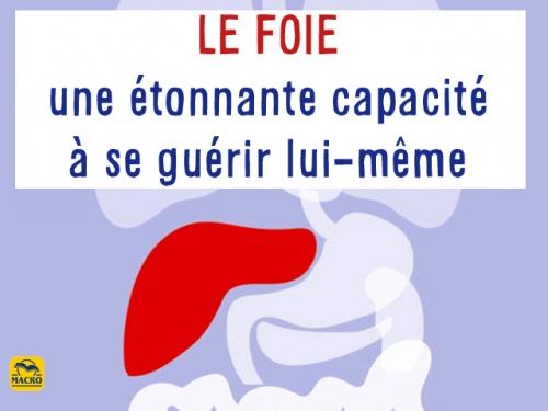 Mr Le Foie : directeur de la désintoxication !