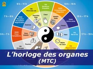 L'Horloge des Organes de Li Wu : vue d'ensemble (MTC)