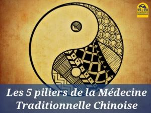 Les cinq piliers de la médecine traditionnelle chinoise…