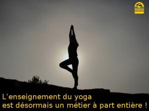 L'enseignement du yoga est désormais un métier à part entière