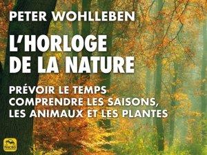 20 choses sur les arbres que vous ignorez sur les arbres et la nature !