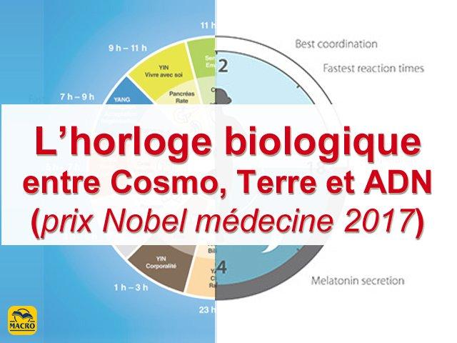 2 choses à savoir sur l'horloge biologique et le prix Nobel de médecine