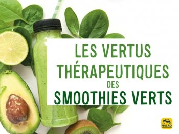 Les boissons vertes et les « smoothies verts » : propriétés curatives et bienfaits