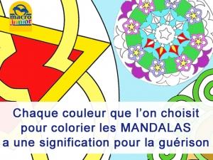 Le sens des couleurs dans les mandalas