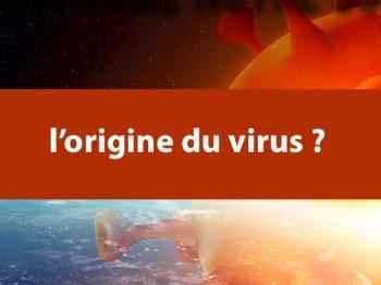Les origines du virus: les nouvelles révélations par Enrica Perucchietti