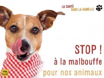 STOP à la malbouffe pour nos chiens et chats !