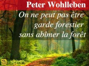 Peter Wohlleben : je voulais sauver toutes les forêts !