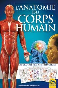 L'Anatomie du Corps Humain - Livre