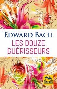 Les douze guérisseurs (epub) - Ebook