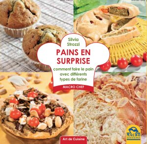 Pains en Surprise - Livre