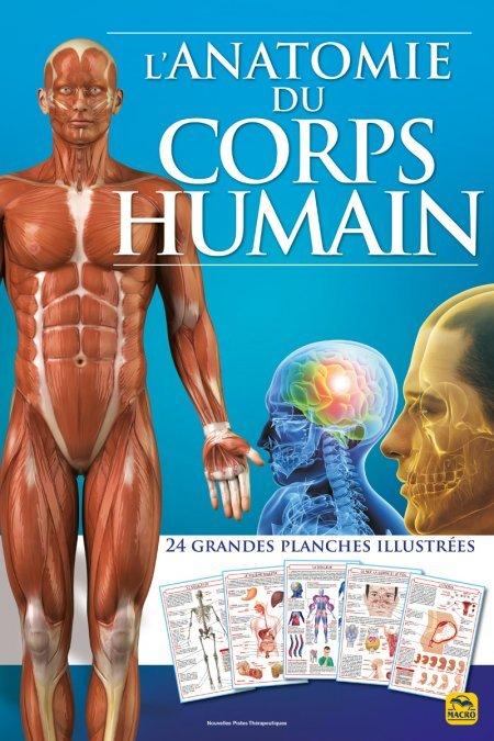 L'anatomie du corps humain (atlas) - Livre