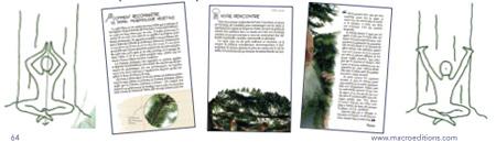 exercice avec les arbres - santé et bien-être