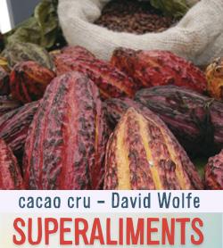 cacao cru antioxydants