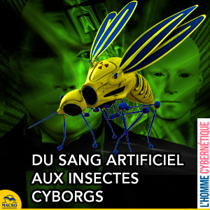 insecte cyborg et sang artificiel groupe 0
