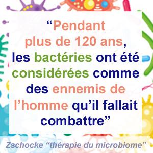 les bonnes et mauvaises bactéries - microbiome