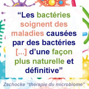 bactéries guérisseuses et microbiome