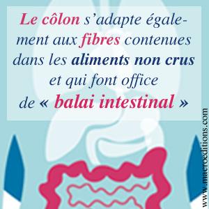 le côlon les fibre et le nettoyage intestinal