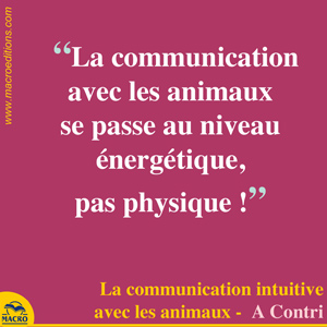 communication animaux énergétique et physique