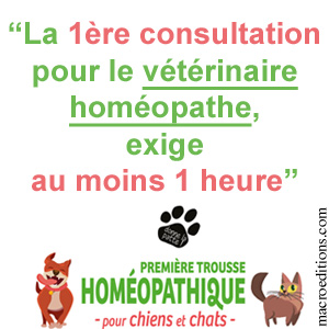 première consultation avec le vétérinaire homéopathe