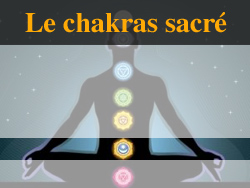 chamane lumira et le chakra sacré