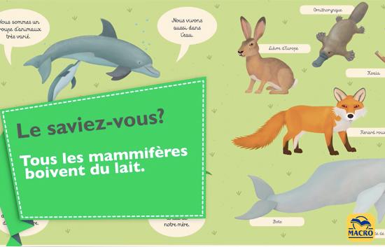 Les mammifères expliqués aux enfants - MacroJunior