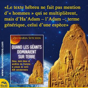 origine de l'humanité - adam - Stchin