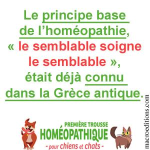 le semblable soigne le semblable - homéopathie