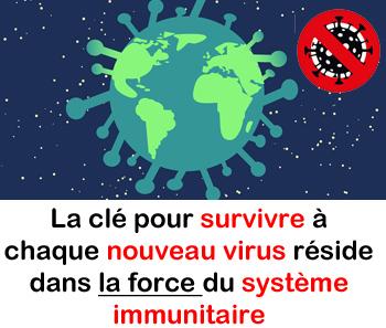 virus et système immunitaire
