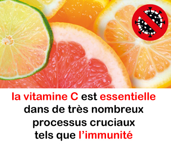 virus et vitamin c