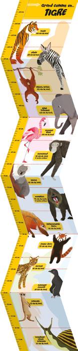 toise à mesurer 1,5m - thème les tigres