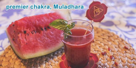 premier chakra, Muladhara